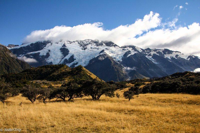 Mont Cook Glacier-3